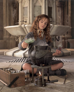 Did you Pay Attention in Potion Class? - One of them is NOT a Polyjuice Potion ingredient. Find it!
