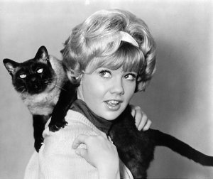 """Hayley Mills plays what character in the Classic movie, """"That Darn Cat""""?"""