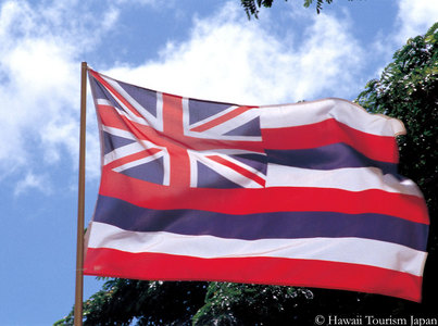 hawaii -- state flag adopted what year ?