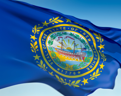 new hampshire -- state flag adopted what year ?