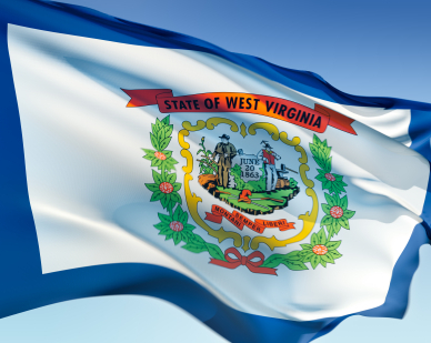 west virginia -- state flag adopted what year ?