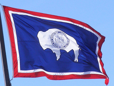 wyoming -- state flag adopted what tahun ?
