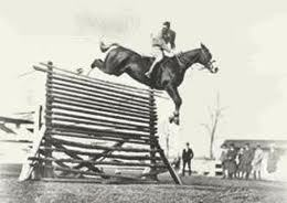How high was the highest horse jump in the world?