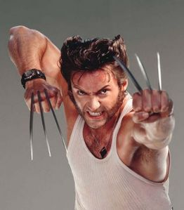 Who plays Wolverine?