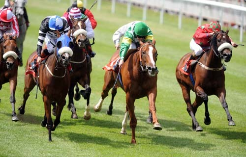 RACING TERMS:In the last race, several horses finish very close together.  What is this kind of finish called?
