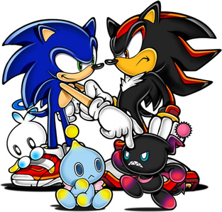 are sonic and shadow rivals o enimies o BEST PALS