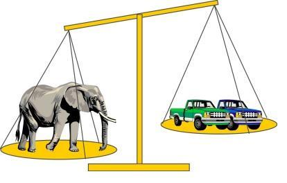 elephant's weight :