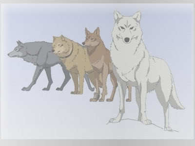 What is the name of the Alpha Male in the anime Wolf's Rain?