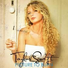 What did Taylor write on the Picture to Burn and Teardrops on My đàn ghi ta, guitar page in her self-titled album booklet?