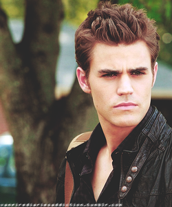 Who plays Stefan?