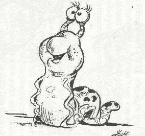 Slugs have ____ noses.