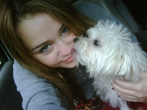 what is the name of miley's white dog
