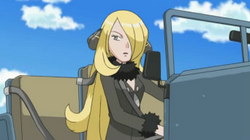 Which region is Cynthia from?