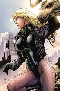 When She's Not Black Canary, What Kind Of Buisness Does Dinah Run?