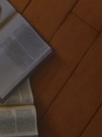 What picture is in this book?
