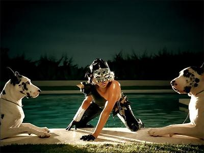 What's the names of the Great Danes in her videos such as; Poker Face, Paparazzi, & Bad Romance
