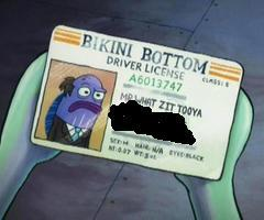 Where does Mr.Whatzittooya live?