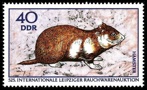 Which hamster is on this stamp?