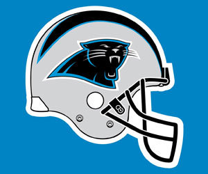 nfl - name the city -- panthers ?
