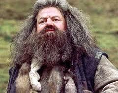 HP & the Phil. Stone: Hagrid wore a helmet when on the flying motorbike?