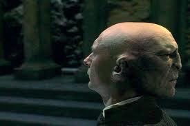 HP & the Phil. Stone: Ollivander says Voldemort did ______ things? (fill in the blank)