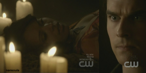 2x18 The last Dance: We never watch Damon and Bonnie planing her fake death.