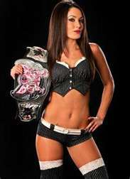 Who did Brie Bella defeat to win the Divas Champion?