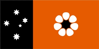 Which state does this flag belong to?