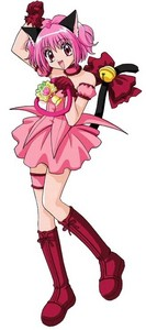 how long does ichigo(from tokyo mew mew) transform?