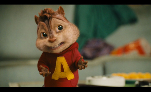What did alvin broke?