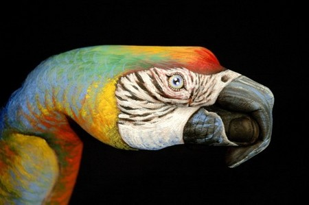 This hand painting was inspired by macaw.