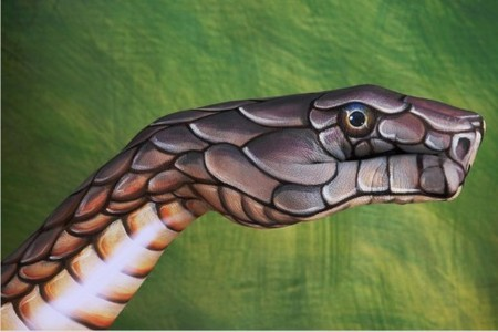 This hand painting was inspired oleh Cobra.