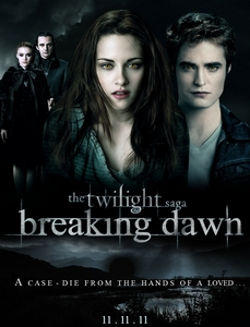 Breaking Dawn comes out in year ?