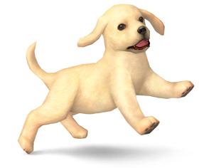True or False: Nintendog are puppies