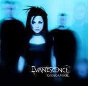 Who wrote Going Under by Evanescence?