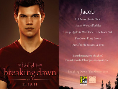 how old will Jacob be in Breaking Dawn part 1 movie if he was born in 1990?
