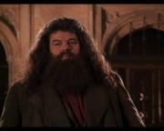 What 월 was Hagrid born?