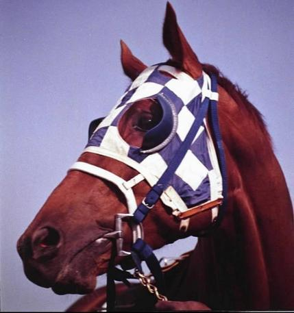 Secretariat's first race was where in July of 1972?