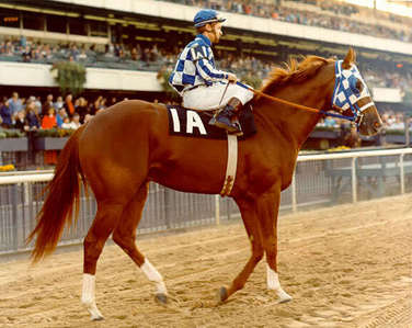 How old was Secretariat when he was  euthanized?