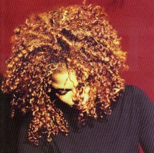 "Which lyrics came from the album ""Velvet Rope"""