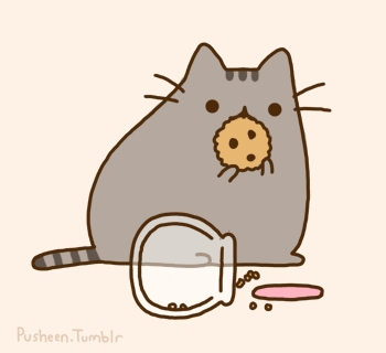 What is the name of Pusheen's owner?