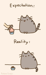 Pusheen the Cat gifs are based on a real cat called Pusheen.