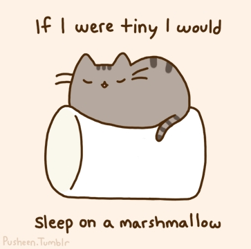 Pusheen is fat.