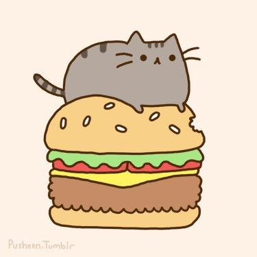 Pusheen likes to sleep on hamburger.