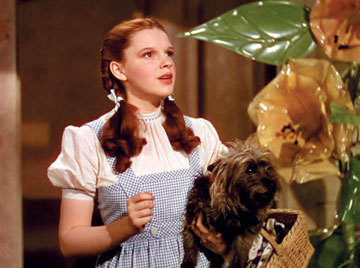 True atau false,there is a hanging munchkin in the wizard of oz.