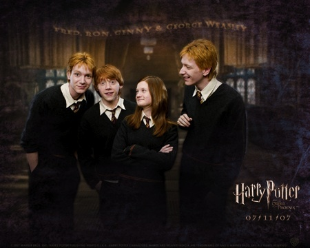 How many brothers does Ginny have?