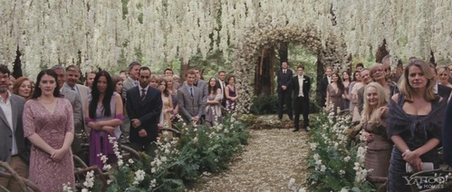 Stephenie Meyer was sitting with the guests in Bella's wedding, True ou False?