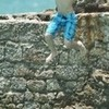 Justin Jumped Off A Cliff!! OH NOOES! JBsPURPLEluva photo