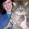 fat cat AJ303 photo