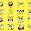 spongebob funny faces AJ303 photo